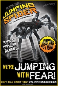 Spirit Halloween, jumping spider